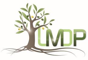 LM-DP : Laboratoire Méditerranéen de Droit Public